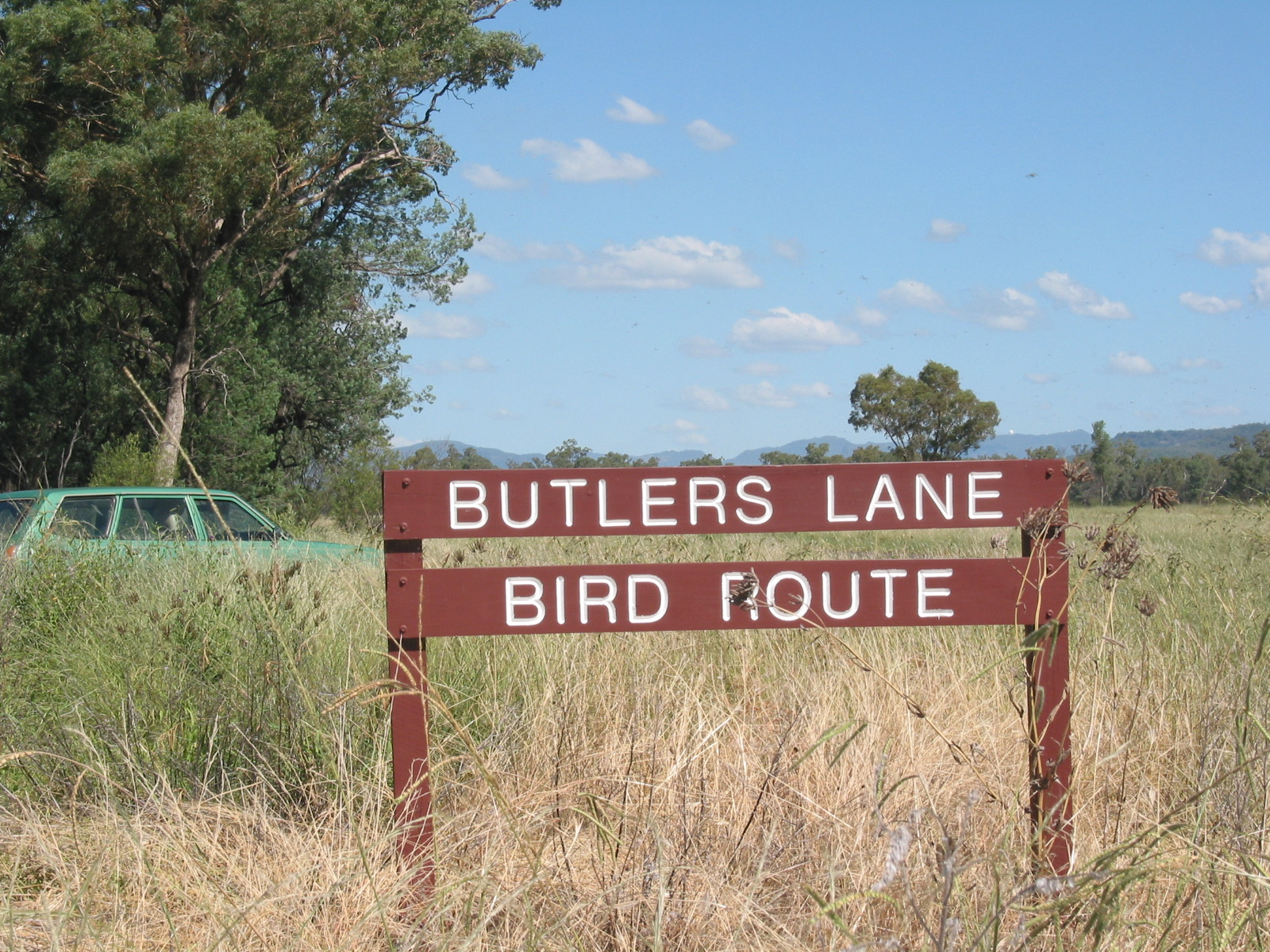 Bird Routes Sign - Copy