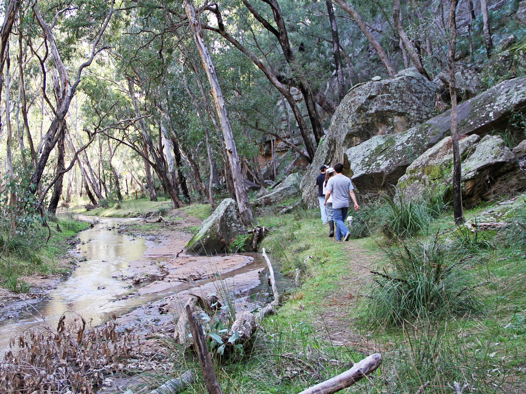 Dandry Gorge bottom walking track with visitors